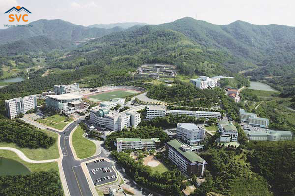 Tổng quan Daegu Haany University